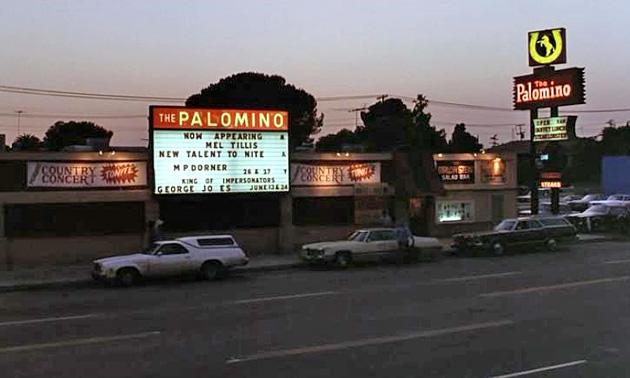 (12) Palomino 1970's