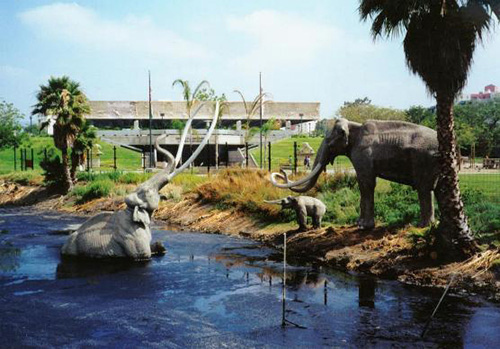 Someone save that poor Mammoth! La Brea Tar Pits off Wilshire blvd West of Fairfax.