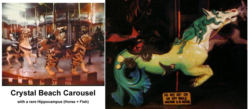 Carousel & Hippocampus